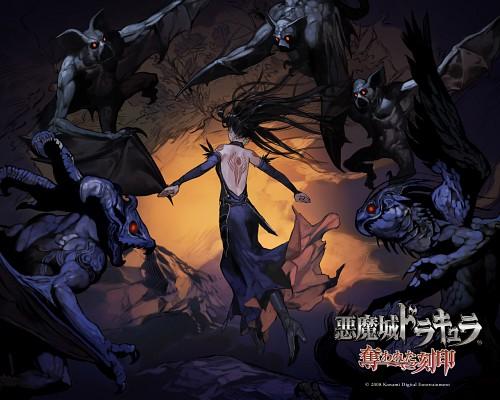 Ayami Kojima, Masaki Hirooka, Castlevania, Shanoa, Official Wallpaper