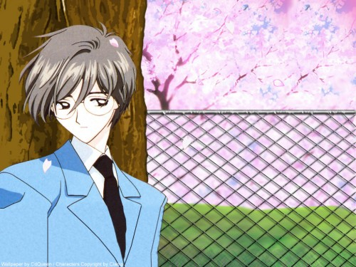 CLAMP, Madhouse, Cardcaptor Sakura, Yukito Tsukishiro Wallpaper